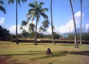 Hawaiian pa site